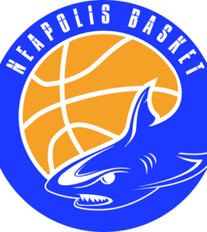 CARTUCCE E TONER : Il Neapolis Basket  torna a vincere
